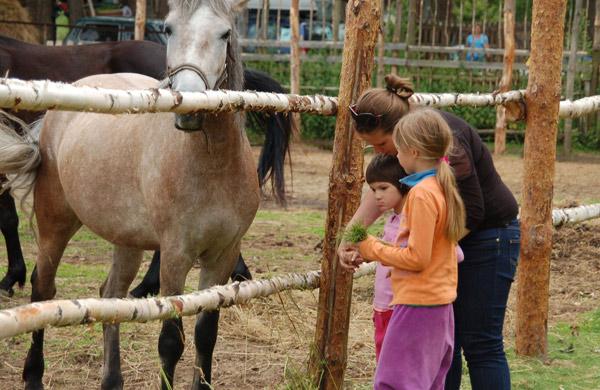 """Лагерь-2010 Детский центр инклюзивного образования """"Подсолнух"""""""
